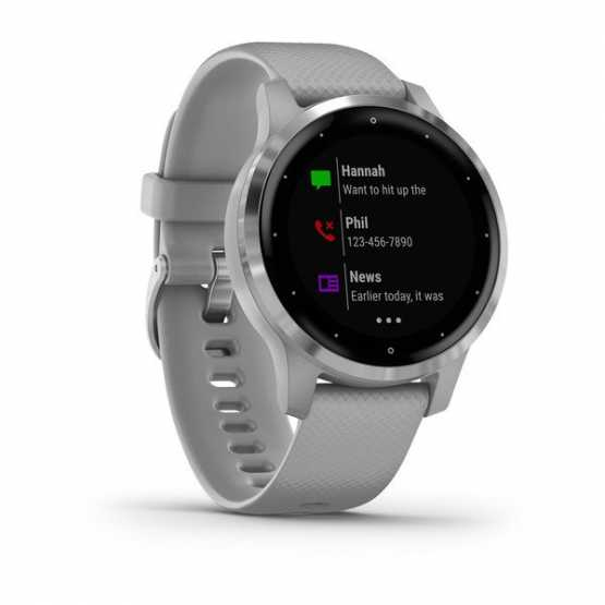 Часы для спорта Garmin vivoactive 4S Powder Gray/Silver  (010-02172-03)