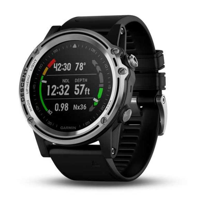 Garmin Descent Mk1 Silver with Black band