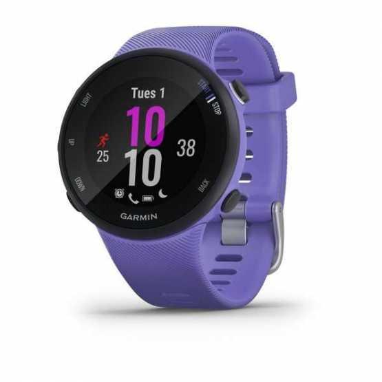 Спортивні годинник Forerunner 45S Iris (010-02156-01)
