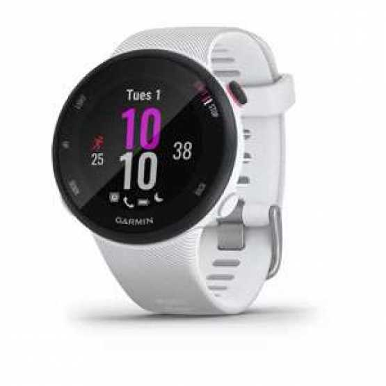 Спортивные часы Forerunner 45S White (010-02156-10)